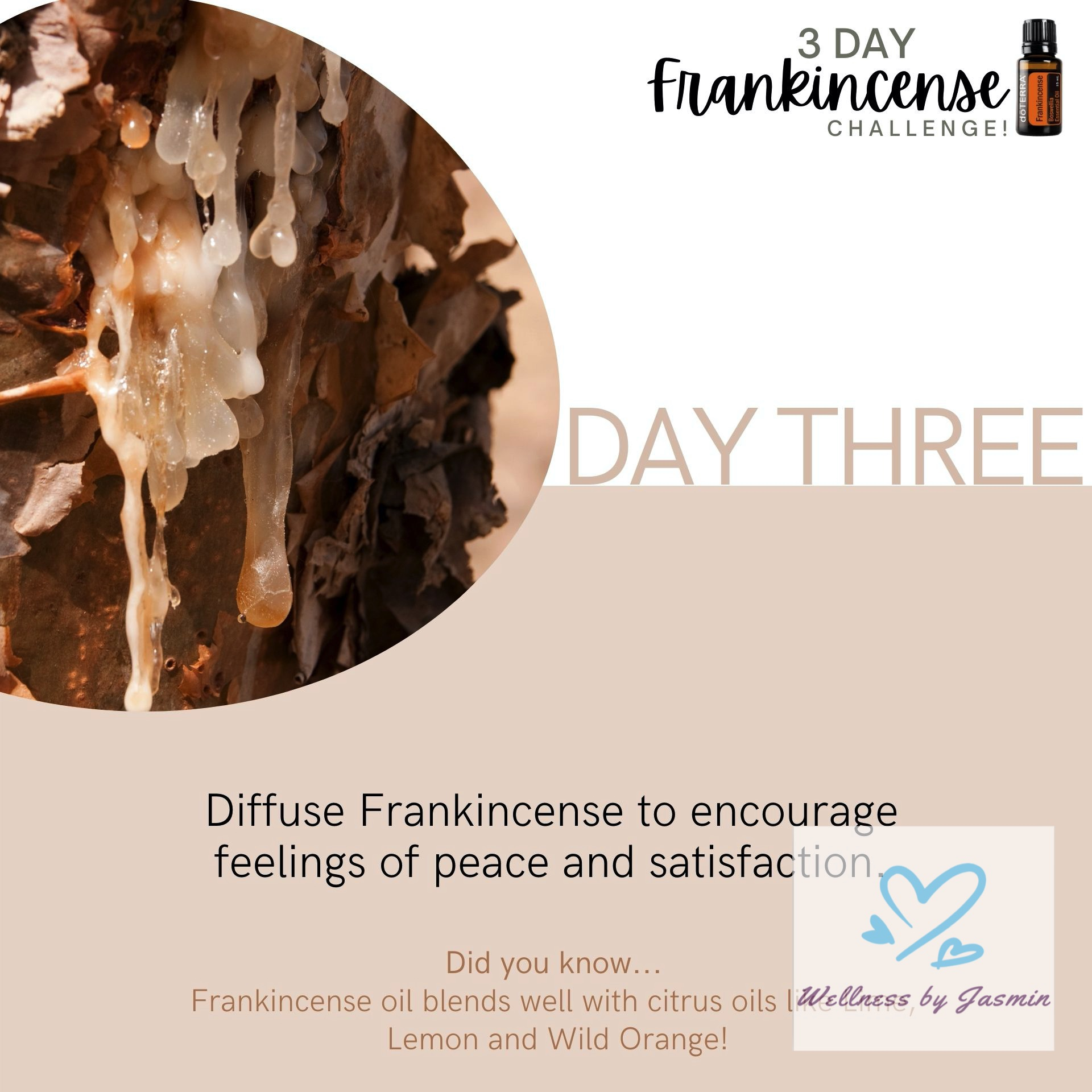 Read about using Frankincense for peace